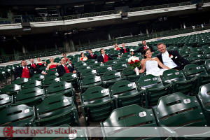 Wedding Photo Example - Wedding Party in Stands