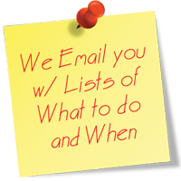 We Email you with List of What to Do and When