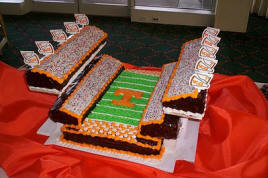 College Stadium Wedding Cake